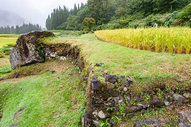 藝術即自然;代表照片:日本,島袋道浩,石垣田作品、蜂箱作品、結東的另一件作品