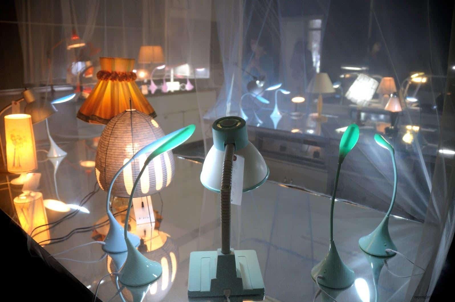 張哲溢,燈光溫室 越後妻有 手風琴/燈光溫室 acoordion conservatory of lights 01
