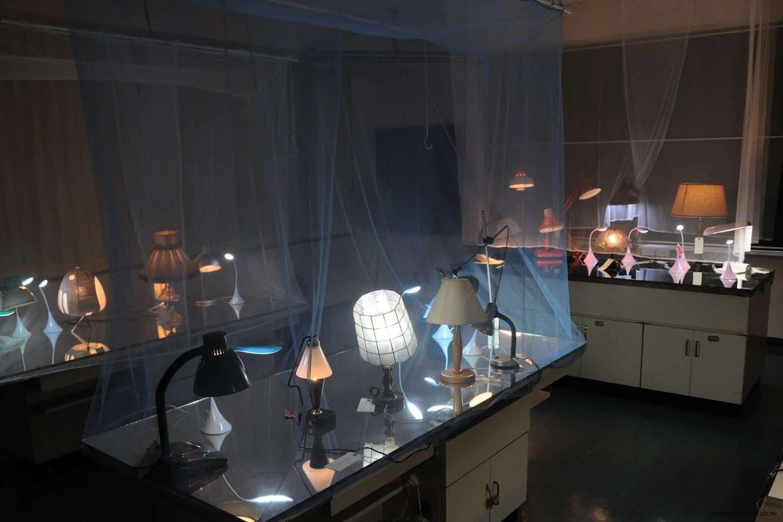 張哲溢,燈光溫室 越後妻有 手風琴/燈光溫室 acoordion conservatory of lights 02
