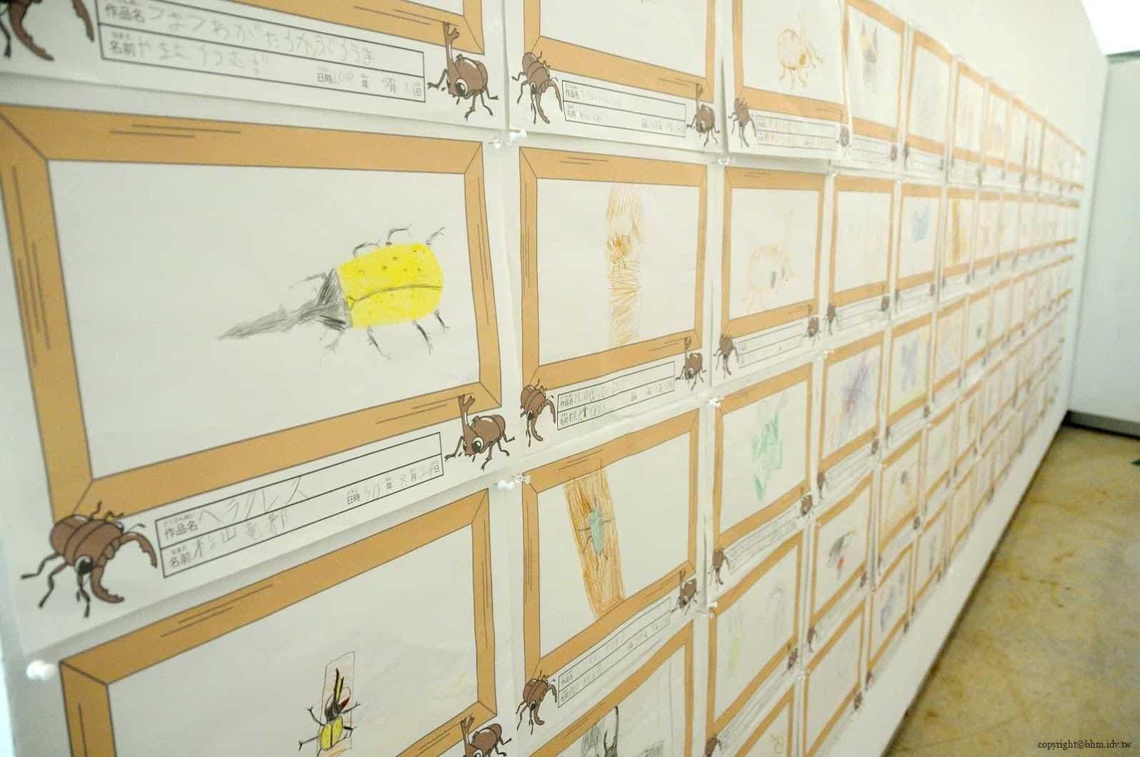 手塚貴晴+手塚由比,十日町市立里山科學館「森林學校」,介紹松之山區域自然與文化的自然科學館,小朋友的昆蟲觀察手繪作品 十日町市立里山科學館 十日町市立里山科學館/森林學校 echigo matsunoyama museum of natural science 06