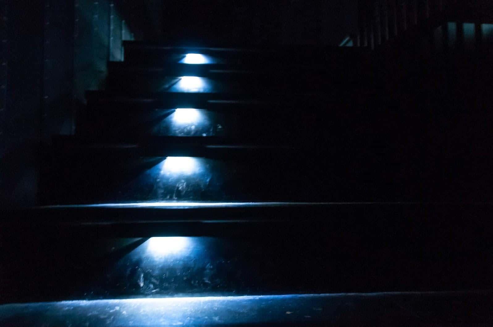 手塚貴晴+手塚由比,十日町市立里山科學館「森林學校」,這個34公尺高的塔頂中的光線,經了解後才知道是透過特殊結構設計讓自然光線進入,非透過電源進行照明十分環保 十日町市立里山科學館 十日町市立里山科學館/森林學校 echigo matsunoyama museum of natural science 18