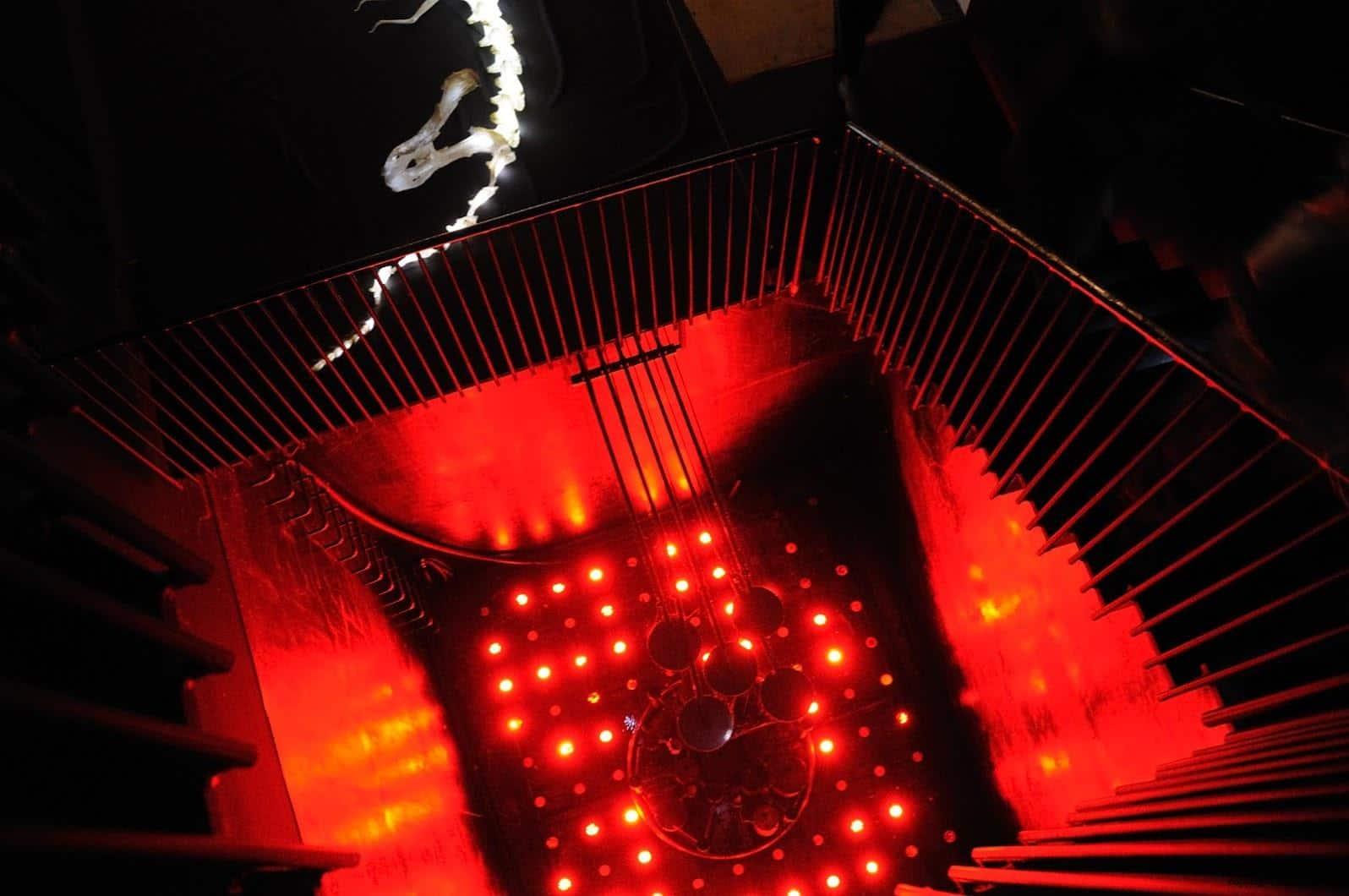 新野洋,日月之江;垂掉在前往十日町市立里山科學館/森林學校高塔的路程中,應對下方紅色詭異光線彷彿是進入地獄的路程 空想x體驗!里山極小極大生物實驗室 空想X體驗!里山極小極大生物實驗室 imaginationexperience micro and macro laboratory of forest life 04
