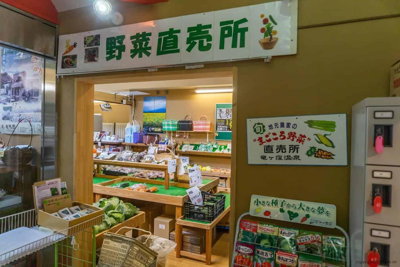 田口行弘,送水,作品旁的竜神の館,「野菜直販所」吸引了我的目光 越後妻有 送水 okurimizu 11