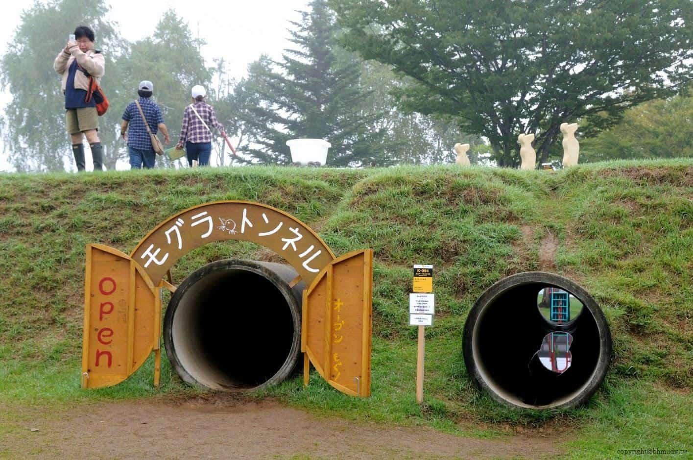 地鼠出沒請小心@里山藝術動物園 里山藝術動物園 里山藝術動物園 satoyama art zoo 09